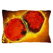 Neisseria meningitidis bacteria Pillow Case