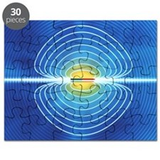 Magnetic field Puzzle