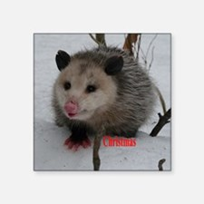 "Snow Possum Square Sticker 3"" x 3"""