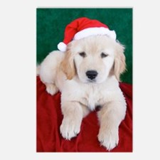 Golden Retriever Puppy Ch Postcards (Package of 8)