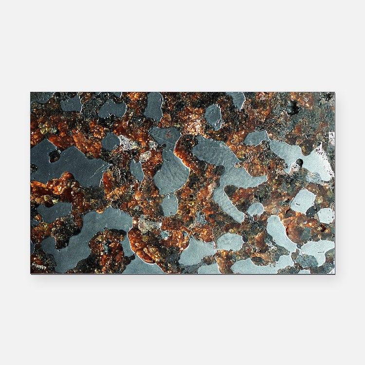 Stony-iron meteorite Rectangle Car Magnet