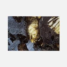 Stony-iron meteorite Rectangle Magnet