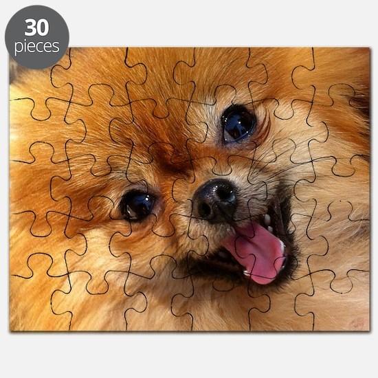 Happy Pomeranian Puzzle