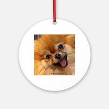 Happy Pomeranian Round Ornament