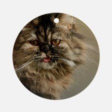 Persian Kitty Round Ornament