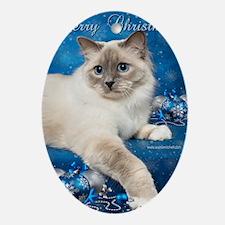 Birman Cat Christmas Card Oval Ornament