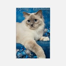 Birman Cat Christmas Card Rectangle Magnet