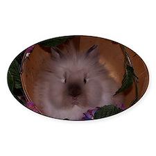 lionhead rabbit Decal