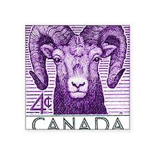 """1953 Canada Bighorn Sheep P Square Sticker 3"""" x 3"""""""