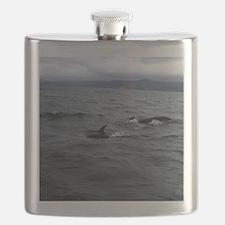 Pilot Whales#3off Cape Breton Island Large P Flask