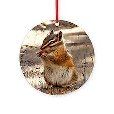 Chipmunk Round Ornament