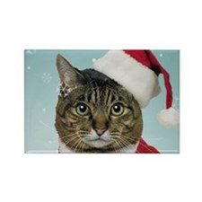 Santa Claws Rectangle Magnet