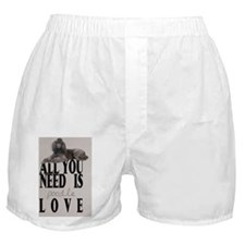 po_car_flag_713_H_F Boxer Shorts