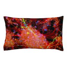 Immunofluorescent LM of rat brain cell Pillow Case
