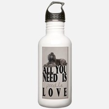 po_3_5_area_rug_833_H_ Water Bottle