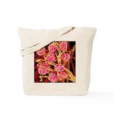 Kidney glomeruli, SEM Tote Bag