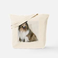 rc_dry_erase_board_676_H_F Tote Bag