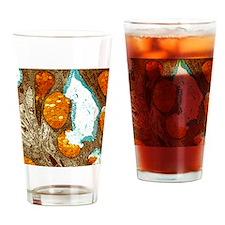 Large intestine, TEM Drinking Glass