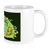 Bacterium Small Mugs (11 oz)