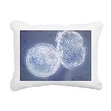 LM of hatching blastocys Rectangular Canvas Pillow