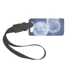 LM of hatching blastocyst in IVF Luggage Tag