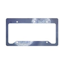 LM of hatching blastocyst in  License Plate Holder