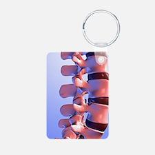 Lumbar vertebrae of the hu Keychains
