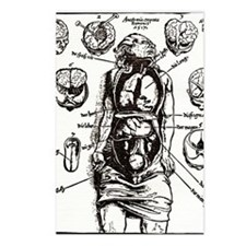 Internal anatomy, 16th ce Postcards (Package of 8)