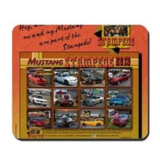 2013 STAMPEDE Mustang pillow Mousepad