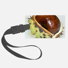 Conker Luggage Tag