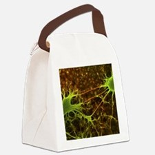 Nerve cell growth Canvas Lunch Bag