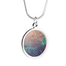 Nerve cell growth Silver Round Necklace