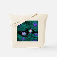 Mitosis Tote Bag