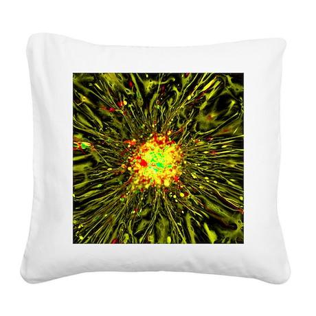 Neurosphere culture Square Canvas Pillow