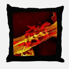 Neutrophil cell trapping bacteria, SE Throw Pillow