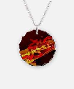 Neutrophil cell trapping bac Necklace