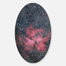Optical image of Eta Carinae Nebula Decal