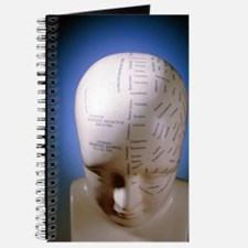 Phrenology bust by L.N. Fowler Journal