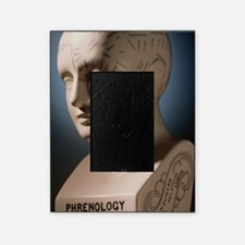 Phrenology bust by L.N. Fowler Picture Frame