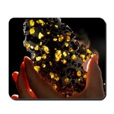 Researcher holds part of the Imilac mete Mousepad