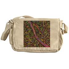 Retina blood vessel and nerve cells Messenger Bag