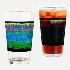 Retina Drinking Glass