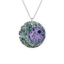 Pituitary gland, TEM Necklace