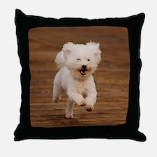 Sventintin Throw Pillow