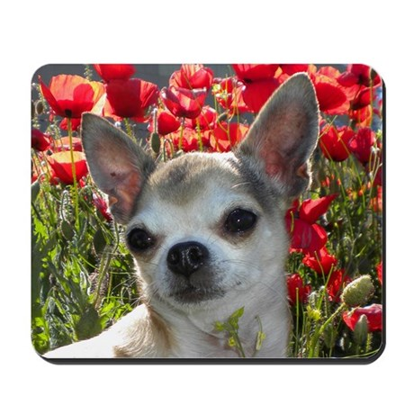 Princess in the Poppies Mousepad