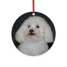 Portrait of a Maltipoo Round Ornament