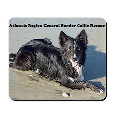 Atlantic Region Central Boder Collie Res Mousepad
