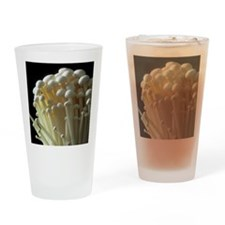 Enoki mushrooms (Flammulina velutip Drinking Glass