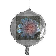 Calcium phosphate crystal, SEM Balloon