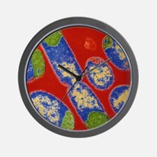 E. coli bacteria Wall Clock
